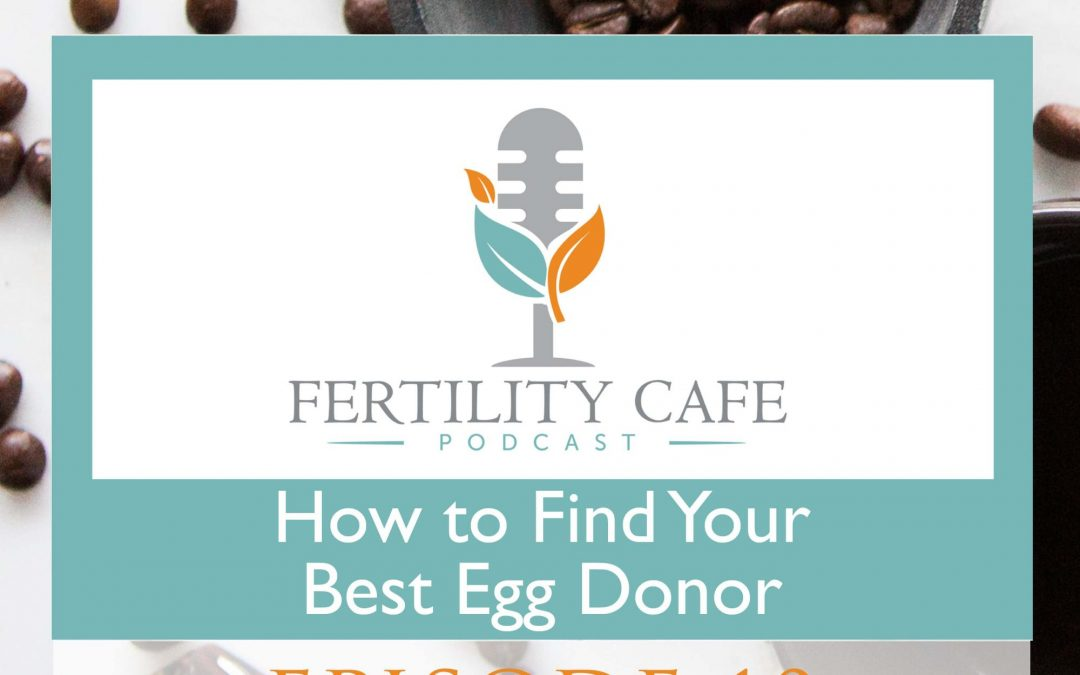 Episode 10. How To Find Your Best Egg Donor