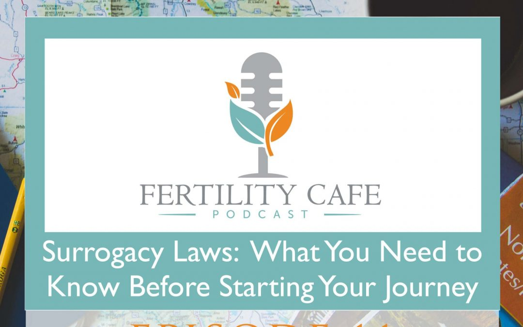 Episode 11. Surrogacy Laws: What You Need to Know Before Starting Your Journey