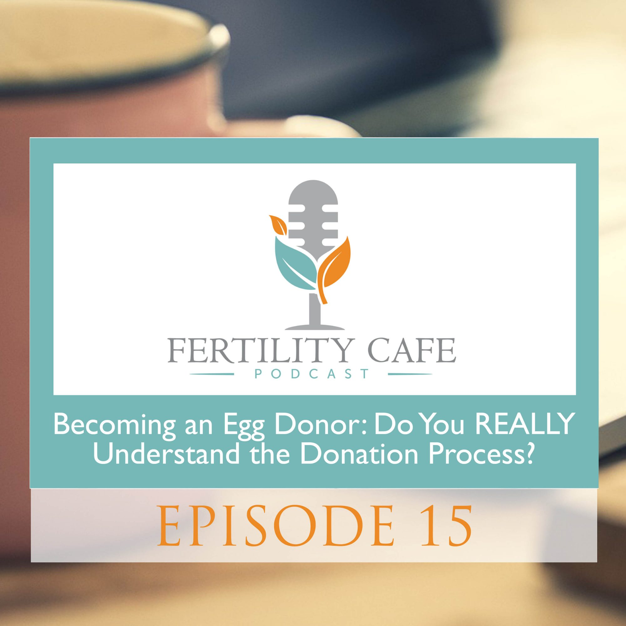 the details of becoming an egg donor