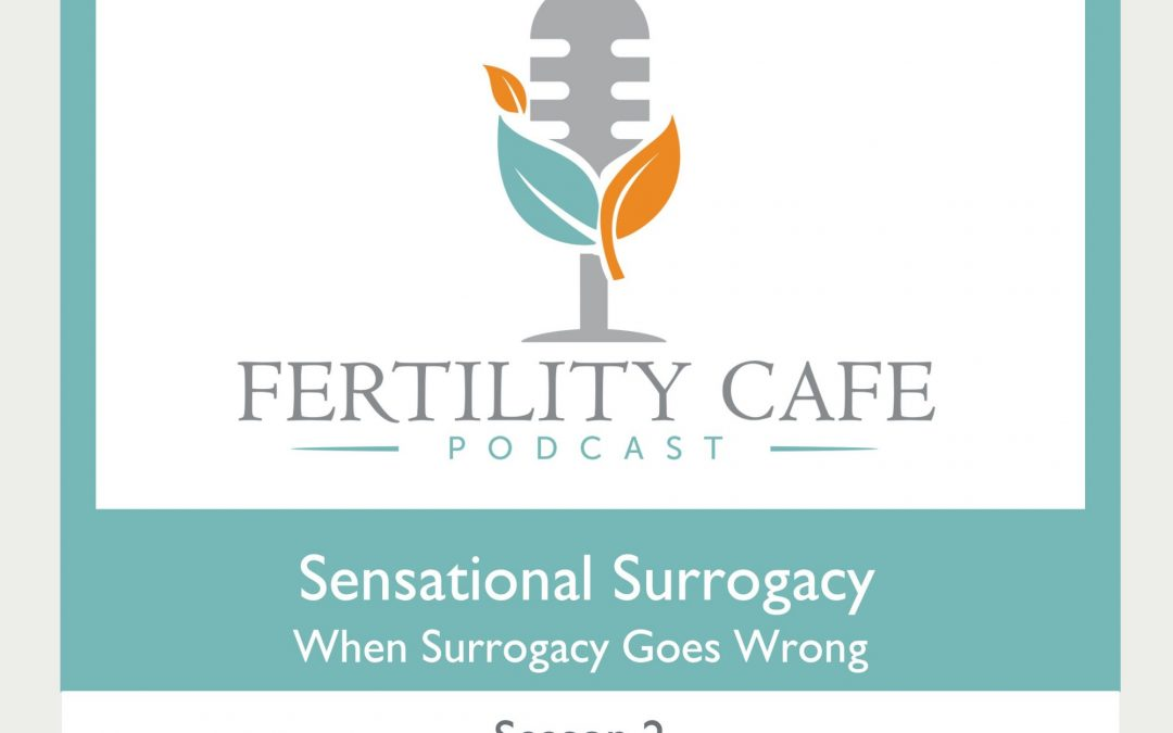 Ep 23 | Sensational Surrogacy