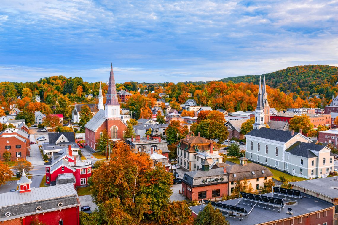 how does surrogacy work in vermont